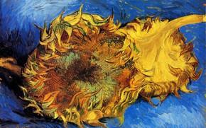 Picture sunflower, Vincent van Gogh, vincent87, Two Cut Sunflowers 3