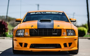 Picture Mustang, Ford, 2008, Saleen, front view, S302, Extreme