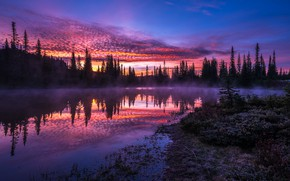 Picture forest, the sky, sunset, fog, reflection, shore, the evening, ate, USA, twilight, silhouettes, pond, national …