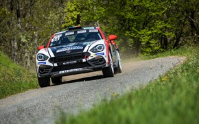 Picture grass, trees, rally, 2018, Abarth, 124 Rally