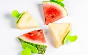 Picture watermelon, pieces, melon
