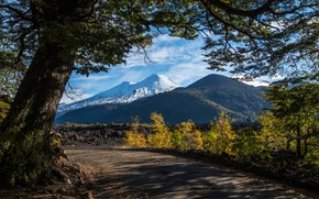 Picture road, trees, mountains, Chile, Andes