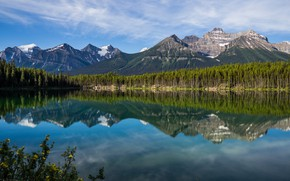 Picture forest, mountains, lake, reflection, Canada, Albert, Banff National Park, Alberta, Canada, Rocky mountains, Banff national …