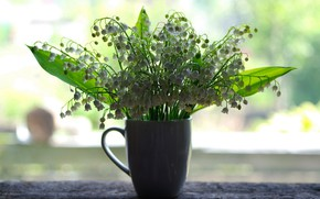 Picture flowers, bouquet, lilies of the valley