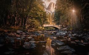 Picture forest, the sun, trees, mountains, bridge, stream, stones, rocks, CA, USA, Yosemite National Park, Pohono …