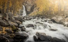 Picture autumn, landscape, mountains, nature, river, stones, waterfall, Altay, Екатерина Хлебникова, Куркуре
