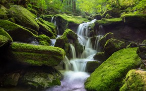 Picture forest, water, nature, stones, waterfall, moss, South Korea