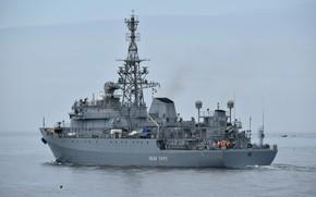 Picture ship, average, intelligence, author Erne, Ivan Khurs