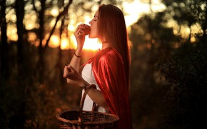 Picture girl, sunset, nature, pose, basket, hair, Apple, bokeh