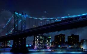 Picture the sky, night, bridge, lights, skyscrapers