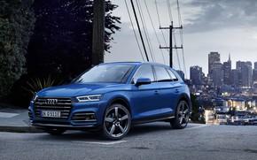 Picture crossover, Audi Q5, 2019