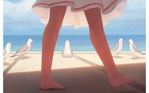Picture sea, girl, seagulls, legs