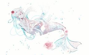 Picture girl, flowers, mermaid, under water
