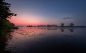 Picture summer, landscape, nature, fog, river, dawn, morning, Dubna, Andrei