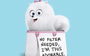 Picture joy, the inscription, dog, bag, The secret life of Pets, The Secret Life Of Pets, ...
