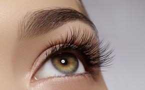 Picture eye, eyebrows, makeup, eyelid