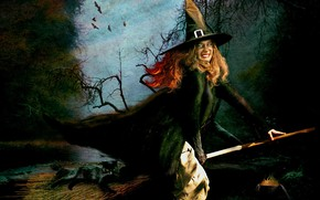 Picture Halloween, witch, broom, black cat