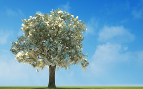 Picture greens, field, the sky, grass, the sun, clouds, branches, tree, money, horizon, bills, banknotes