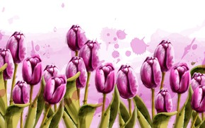 Picture flowers, tulips, texture units