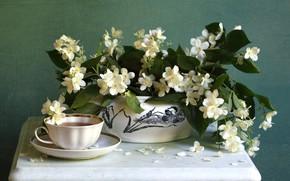 Picture tea, bouquet, Jasmine