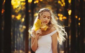 Picture autumn, forest, leaves, girl, nature, hair, bokeh, Ann Nevreva