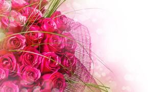 Picture mesh, roses, bouquet, wrapper
