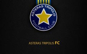 Picture wallpaper, sport, logo, football, Greek Super League, Asteras Tripolis