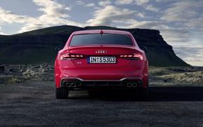 Picture Audi, TDI, rear view, Coupe, Audi S5, 2020