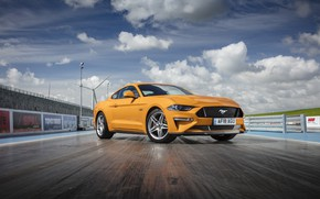 Picture ford, 5.0, mustang gt