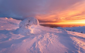 Picture nature, tree, dawn, trails, spruce, morning, The white sea, snow, The Arctic, Kandalaksha, landscape winter, …