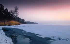 Picture winter, lake, shore