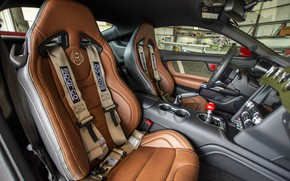 Picture Ford, salon, Mustang GT, Roush, 2019, Old Crow