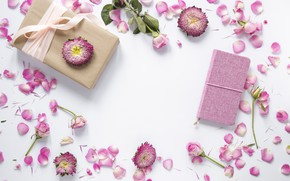 Picture flowers, background, roses, petals, pink, buds, pink, flowers, background, petals, roses