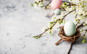 Picture branch, spring, Easter, composition