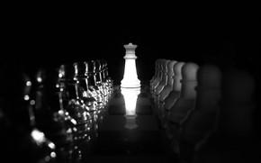 Picture chess, figure, Queen's Gambit