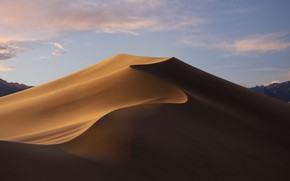 Picture day, dunes, macos