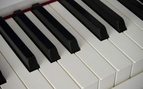 Picture piano, keys, piano