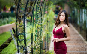 Picture look, girl, hair, Asian, bokeh, dress