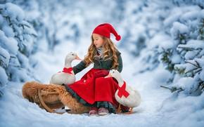 Picture winter, forest, snow, birds, duck, girl, sleigh, Anastasia Barmina