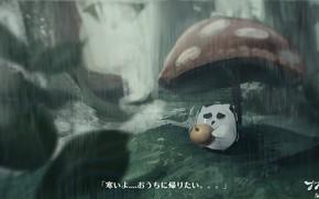 Picture rain, mushroom, cherry, owlet, sad