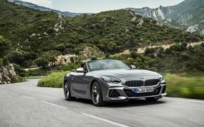 Picture road, asphalt, mountains, grey, vegetation, BMW, Roadster, BMW Z4, M40i, Z4, 2019, G29