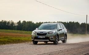 Picture road, movement, Subaru, crossover, Forester, 2019