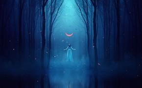 Picture Girl, Fog, Night, Trees, Forest, Dark, Fiction, A month, Forest, Surreal, Genes Raz von Edler, …