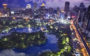 Picture trees, the city, fog, Thailand, Bangkok, Thailand, Bangkok