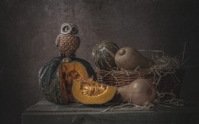 Picture the dark background, table, owl, bird, pumpkin, pumpkin, still life, basket, items, figure, souvenir, composition