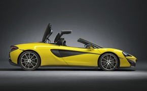 Picture McLaren, side view, Spider, 570S