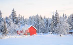 Picture winter, snow, trees, landscape, winter, house, hut, landscape, nature, beautiful, winter, snow