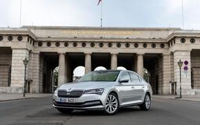 Picture area, sedan, Skoda, Skoda, four-door, Superb, 2020, gray-silver