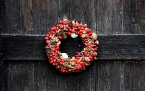 Picture tree, Board, texture, briar, wreath, bumps, acorns
