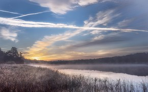 Picture the sky, clouds, fog, lake, shore, morning, pond